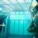 Bilder zur Sendung: Shark Night