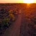 Die Hüter vom Krüger Nationalpark