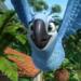 Bilder zur Sendung: Rio 2 - Dschungelfieber
