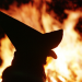 Hexenwahn - Die Dokumentation