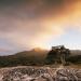 Vulkane in Neuseeland
