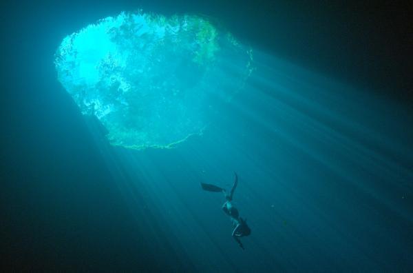 Bild 1 von 6: Die Freitaucherin Camila Jaber taucht in die Tiefen der Cenoten hinab, mit Süßwasser gefüllte Höhlen ? für die Maya eine Pforte zum Jenseits.