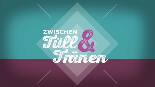 Bild 1 von 12: Logo