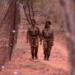 Bilder zur Sendung: Black Mambas - Frauen an der Front gegen Wilderei