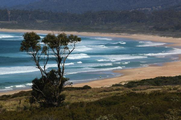Bild 1 von 5: Die Hauptinsel Tasmaniens hat etwa die Gr?§e Irlands und wird von knapp 3.000 Kilometern K?ste umrahmt.