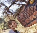 Casper Van Dien in: Python - Lautlos kommt der Tod