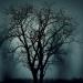 Die Geisterflüsterer - Zu Gast in der paranormalen Welt