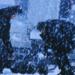 Bilder zur Sendung: Die purpurnen Fl�sse