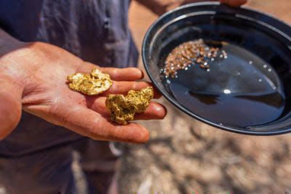 Bild 1 von 1: Aussie Gold Hunters