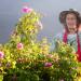 Im Tal der Rosen - Bulgariens blühender Schatz