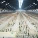 Bilder zur Sendung: China - Geschichte einer Großmacht