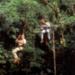 Bilder zur Sendung: Medicine Man - Die letzten Tage von Eden