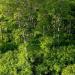 Bilder zur Sendung: Wiener Wälder - Grüne Juwele
