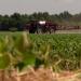 Die Saat der Gier - Wie Bayer mit Monsanto die Landwirtschaft verändern will