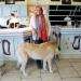 Bilder zur Sendung: 15 Dinge, die Sie über Haustiere wissen müssen