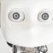 Werden Maschinen zu Menschen?
