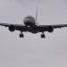 Augenzeuge Smartphone - Schwierige Flugpassagiere