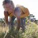 Bilder zur Sendung: Kräuterwelten - In der Provence