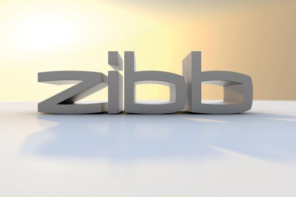 Bild 1 von 1: zibb - Logo