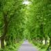 Die 30 schönsten Naturwunder in Berlin und Brandenburg