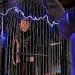 Bilder zur Sendung: Sci Fi Science: Schutzschilde