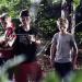 Die Baumhauskönige