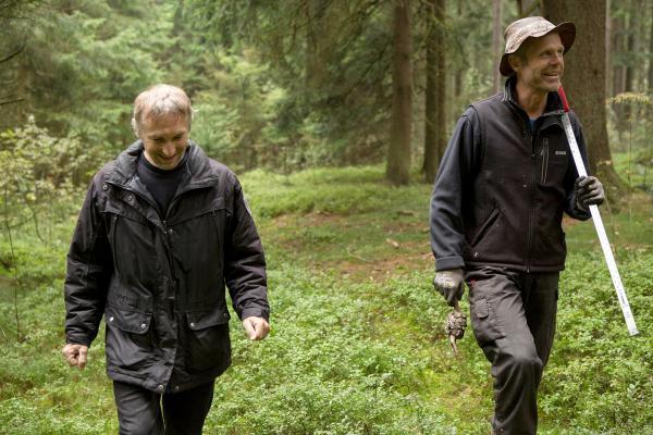 Bild 1 von 4: Cembalobauer Martin Pühringer (li.) sucht mit einem befreundeten Förster im Böhmerwald einen Baum mit regelmäßiger Struktur für den Cembalobau.