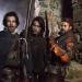 Die Musketiere