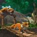 Bilder zur Sendung: Das Dschungelbuch