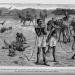 Geschichte des Rassismus