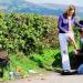 Die grünen Hügel von Wales