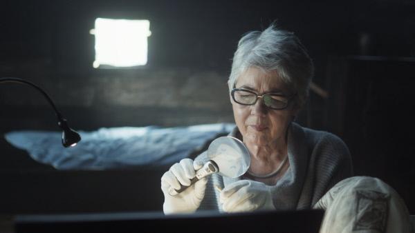 Bild 1 von 8: Dr. Eva Kreissl vom Landesmuseum Joanneum in Graz betrachtet eine \