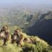Bilder zur Sendung: Expeditionen ins Tierreich