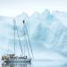 Arktis - Leuchtendes Leben unterm Eis