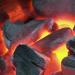 Bilder zur Sendung: Deutschland im Glutrausch - Grillen extrem