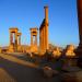 Die Rettung Palmyras