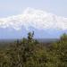 Alaska - Mit dem Zug durch die Wildnis