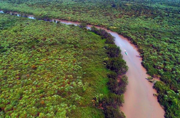 Bild 1 von 5: Das Irrawaddy-Delta bietet den Mangroven Lebensraum und seinen Bewohnern durch seine weit verzweigten und fischreichen Gewässer Nahrung und Verkehrswege.