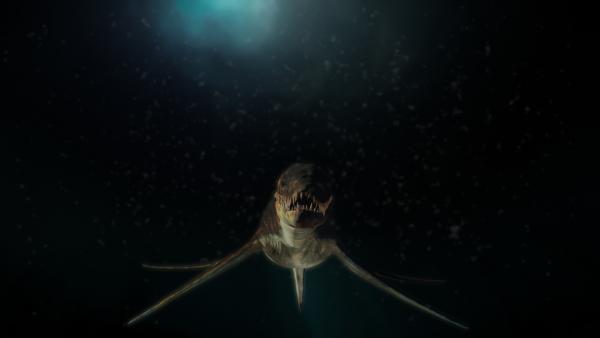 Bild 1 von 4: Spezialisten versuchen herauszufinden, was für ein Tier sich in den Tiefen des Sees verstecken könnte.