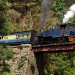 Mit dem Zug durch Indiens Blaue Berge