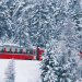 Bilder zur Sendung: Traumroute durch die Alpen - der Bernina-Express