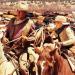 Bilder zur Sendung: Die Cowboys