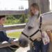 Bilder zur Sendung: Heartland - Paradies f�r Pferde