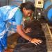 Bilder zur Sendung: Indien: Haare für die Götter