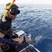 Bilder zur Sendung: Giganten im Mittelmeer