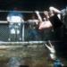 Bilder zur Sendung: Jackass: The Movie