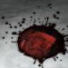Der Nostradamus-Effekt: Die Sieben Siegel
