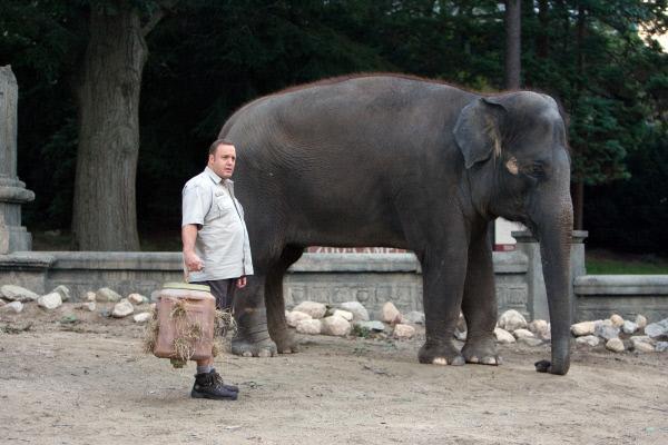 Bild 1 von 9: Griffin Keyes (Kevin James) geht im Gehege des Elefanten Barry seiner Arbeit als Zoowärter nach.