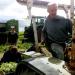 Bilder zur Sendung: Der Biobauer, das Horn und der Kampf ums Land