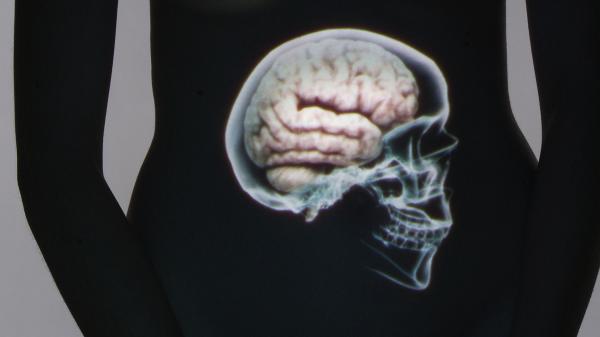 Bild 1 von 3: Bei Forschern setzt sich allmählich die Überzeugung durch, dass das Gehirn im Kopf nicht der einzige Kapitän an Bord ist.